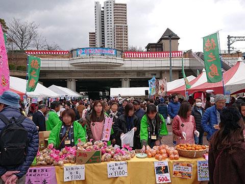 榮百々代 徳之島祭り